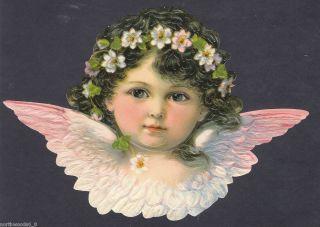 Cherub Angel Bust Pink Feathers Wings Head Face Embossed German Paper