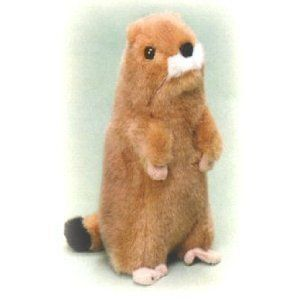 blacktailed prairie dog plush stuffed animal toy time left