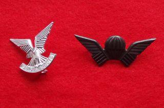Rhodesian Selous Scouts Cap Badge Numbered Wing RARE