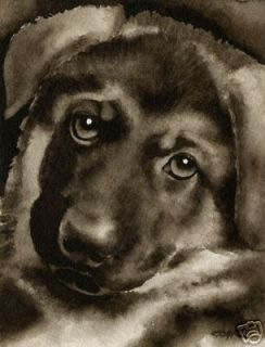 german shepherd puppy dog painting art signed by djr time