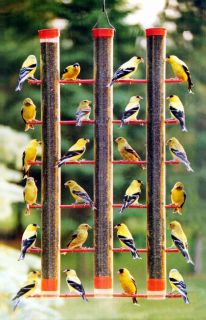 Best Finches Seed Wild Bird Feeder Triple Tubes Plastic