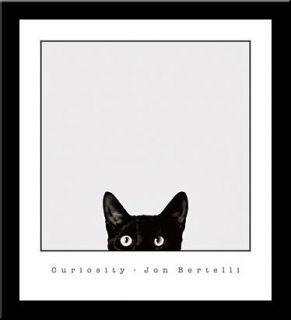 Curiosity Black Cat Art Framed Print John Bertelli
