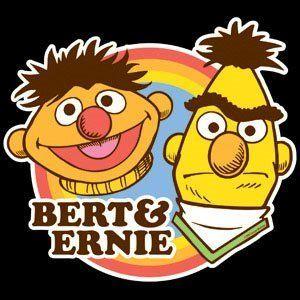 Bert Ernie Sesame Fabric T Shirt Iron on Transfer