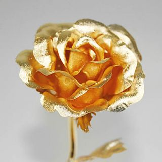 Rose Best Gift for Valentines Day Wedding Anniversary Birthday
