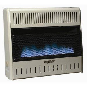 World Natural Gas Dual Fuel Blue Flame Wall Heater Control Portable