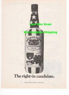 Boones Farm Strawberry Hill Wine Patriotic Bottle Picture Print 1972