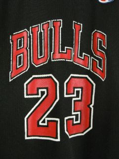 Vintage Chicago Bulls 23 Jersey Jordan Champion Youth M