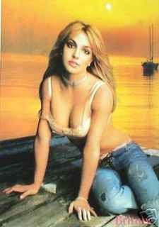 britney spears bra panties at sunset poster