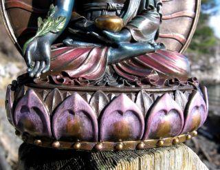 Tibetan Buddhist Healing Medicine Buddha Statue Special Box