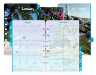 Day Timer Coastlines 2 PG Month Calendar Refill Monthly Tabs Desk Sz 5