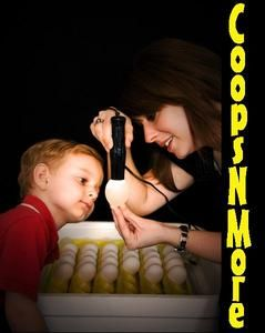 Cool Lite Egg Candler for Candling Brooder Incubator Chicken Hen Quail