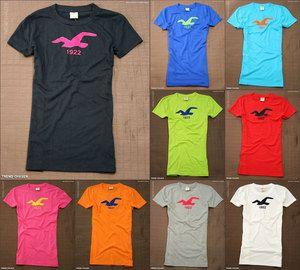 Fall Hollister HCO Womens Short Sleeve Tshirt La Jolla Cove NWT