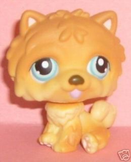 Littlest Pet Shop Chow Chow Dog Puppy 117 New