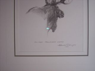 Original Pencil Drawing by Claudio DAngelo Canadian Artist