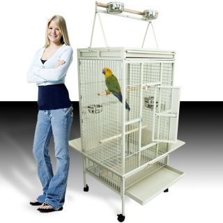 Large White Parrot Bird Cockatiel Parakeet Finch Cage Playtop Gym