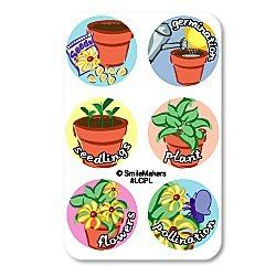 60 Plant Life Cycle Stage Metamorphosis Dot Stickers Teacher Student