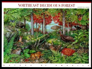 3899 Nature of America NE Deciduous Forest Mint Sheet of 10 37c