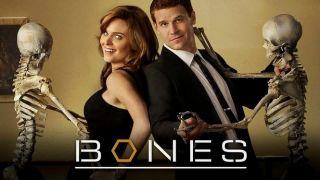 BONES   Seasons 1 5 (DVD) The Complete Season 1 2 3 4 5 ~ *New
