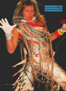 David Lee Roth Pinup Van Halen 80s Guitar Rock Vtg