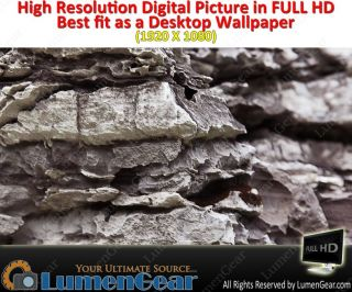 Full HD Digital Picture Desktop Wallpaper Grudge Texture in Real Stone