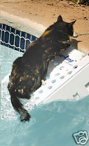 Super Skamper Ramp Dog Pet Water Pool Boat Safety Ramp