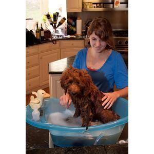 Pet Gear Pup Tub Dog Bath Tub Grooming Wash Washing Shampooing Small
