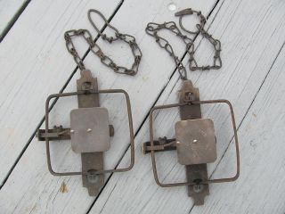Working Vintage Old Steel JUMP TRAPS BLAKE LAMB 2 Double Springs