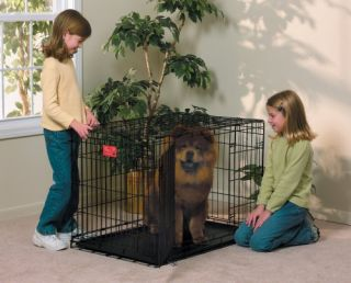 Double Door Folding Metal Dog Crate Large Dog Cage Brand New