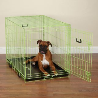 Crate Appeal Fashion Color Dog Crates Dazzling Pet Travel Crate Lime