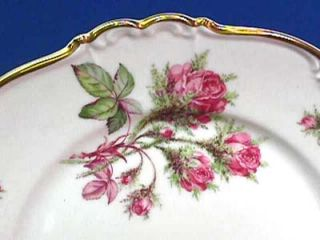 Edelstein Bavaria China Moss Rose 16703 Dinner Plate