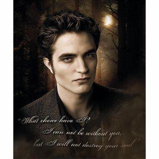 Twilight Handsome Edward Licensed Fleece Throw Blanket