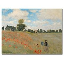 Claude Monet Chrysanthemums, 1878 Canvas Art Print   19 x 14