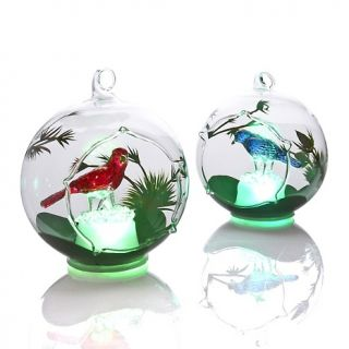 186 392 winter lane winter lane set of 2 bird led globe ornaments note