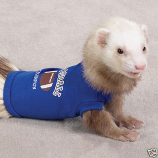 Sports Ferret Clothes T Shirt Blue Football Champion 6