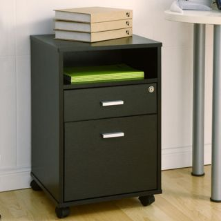 Terra Matte Wood Veneer Black Finish File Storage Cabinet
