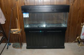 New 55 Gal Gallon Aquarium Fish Tank Black Stand Hood and Light