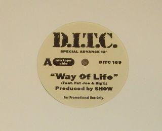 DITC Way of Life Big L Fat Joe Showbiz 12 Hip Hop Vinyl