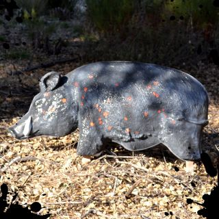 NEW Tactical Mutilating Feral Hog Life Size Animal Hunting Shooting