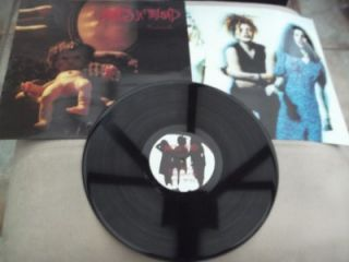 Babes in Toyland Fontanelle 12 Vinyl Record Album 1992
