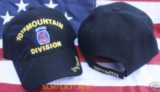 10th Mountain Infantry Division Hat Fort Drum US Army