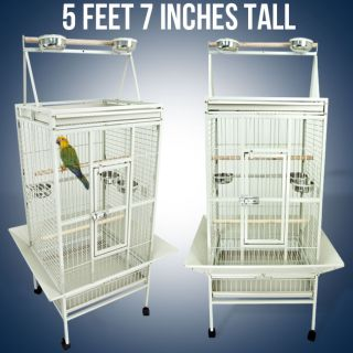 Large White Parrot Cage Bird Cockatiel Parakeet Finch Playtop Gym