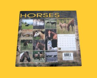 Horses 2013 12 Month CALENDAR NEW SEALED