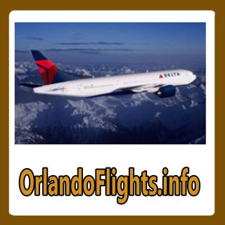 Orlando Flights Info Web Domain for Sale Travel Airline Tickets