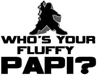 Gabriel Iglesias Whos Your Fluffy Papi T Shirt Funny Humor Comedian