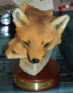 Fox Head Statue from Dennis Franzen Collection Damaged