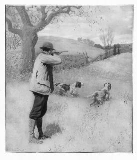 hunting by a b frost on the wing dogs pointer hunt