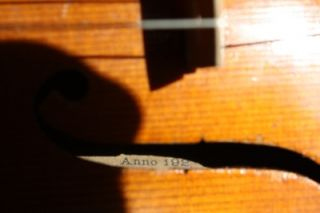 Vintage Violin Labeled Gennaro De Luccia 1925