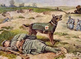 German Shepherd Rescue War Dog Lovely Little Dog Print