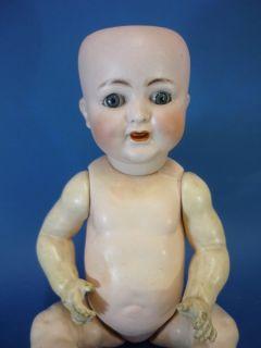 15 Alt Beck & Gottschalk 1352 Character Baby Bisque Head Doll German