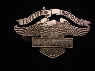 Harley Davidson Eagle w Shield Pewter Pin Beautiful